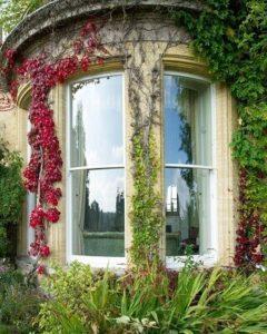 Bowed sash window
